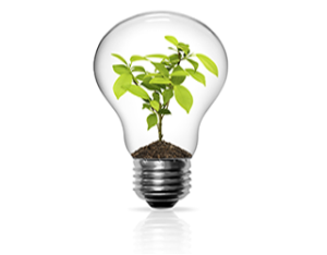 Lightbulb-with-Plant